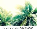 coconut palm tree in vintage... | Shutterstock . vector #504966508