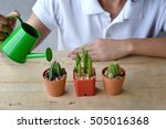 Woman Watering A Plant With...