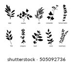 collection of hand drawn black... | Shutterstock .eps vector #505092736