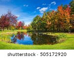 Charming Oval Pond In The...