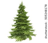 single pine tree isolated on... | Shutterstock . vector #505248178