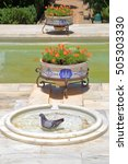 Small photo of Pigeon inside small fountain from the Alcazar of the Christian Monarchs (Alcazar de los Reyes Cristianos) Cordoba, Andalusia, Spain