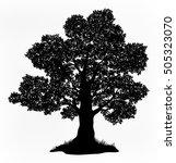 summer landscape oak tree with... | Shutterstock .eps vector #505323070