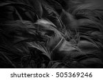 blur feather wool dark black... | Shutterstock . vector #505369246