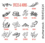 big set of vector doodle... | Shutterstock .eps vector #505451614