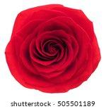 Red Rose. Deep Focus. No Dust....