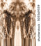 feather texture print wings... | Shutterstock . vector #505569559