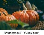 Several Large Orange Pumpkins...