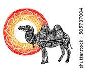 egypt  camel  vector  desert ...   Shutterstock .eps vector #505737004