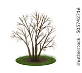 bush with shadow without leaves ...   Shutterstock .eps vector #505742716
