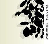 tree branch leaf vector... | Shutterstock .eps vector #505771756