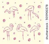 set of hand drawn flamingos | Shutterstock .eps vector #505900378