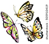 butterfly watercolor  isolated... | Shutterstock . vector #505910419
