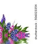 blue lupines beautiful flowers...   Shutterstock . vector #506023354