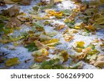 autumn park after the first... | Shutterstock . vector #506269900