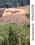 Small photo of Clear cut logging slope, just outside Willamette National Forest, Central Oregon Cascades