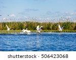 landscape photo of white... | Shutterstock . vector #506423068