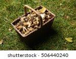 Various Raw Mushrooms In A...