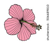 Hibiscus Vector Illustration O...