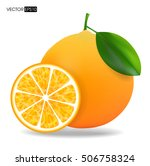 vector collection of fresh ripe ... | Shutterstock .eps vector #506758324