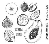 vector tropical fruit set   fig ...   Shutterstock .eps vector #506782129