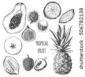 vector tropical fruit set   fig ... | Shutterstock .eps vector #506782138
