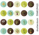 agriculture crops color flat... | Shutterstock .eps vector #506819410