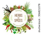 culinary herbs and spices big... | Shutterstock .eps vector #506821378