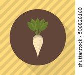 sugar beet agriculture crop....