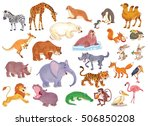 big set of different wild... | Shutterstock . vector #506850208