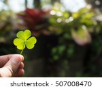 hand holding green clover leaf... | Shutterstock . vector #507008470