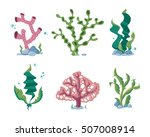 Underwater Seaweeds  Aqua Kelp...