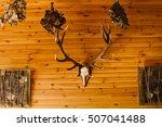 Deer Antler On Old Brown Woode...