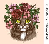 maine coon cat portrait with...   Shutterstock .eps vector #507067810