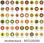 Nuts And Seeds Vector Icon Set.