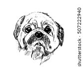 black and white vector sketch... | Shutterstock .eps vector #507222940