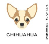 illustration of chihuahua dog...   Shutterstock . vector #507247276