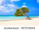 aruba  netherlands antilles.... | Shutterstock . vector #507270043