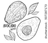 vector hand drawn avocado and... | Shutterstock .eps vector #507287173