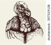 turkey head  vector... | Shutterstock .eps vector #507319138