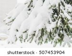 Green Fir Strewn With Thick...