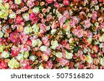 Stock photo closeup image of beautiful flowers wall background with amazing red and white roses 507516820