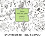 spice and herbs top view frame. ... | Shutterstock .eps vector #507535900
