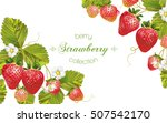 vector strawberry horizontal... | Shutterstock .eps vector #507542170