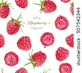 vector raspberry seamless... | Shutterstock .eps vector #507542344