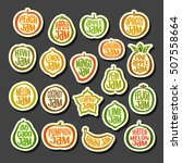 vector set colorful fruits jam... | Shutterstock .eps vector #507558664