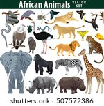 wild african animals set with... | Shutterstock .eps vector #507572386