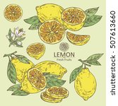 collection of lemon  lemon... | Shutterstock .eps vector #507613660