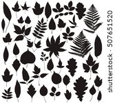 autumn leaves silhouette set  | Shutterstock .eps vector #507651520
