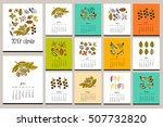 floral vivid calendar. hand... | Shutterstock .eps vector #507732820